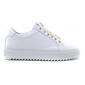Maddy H Footnotes sneaker wit crocolak
